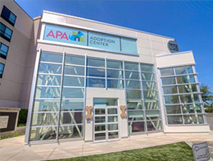 apa-promo-building-310x235