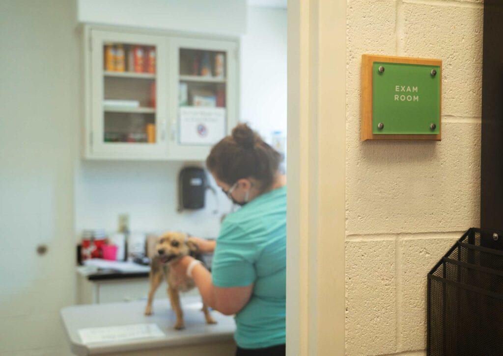 APA Veterinary Clinic